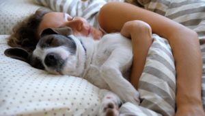 Cuddling with dog, wondering about pets and sleep apnea